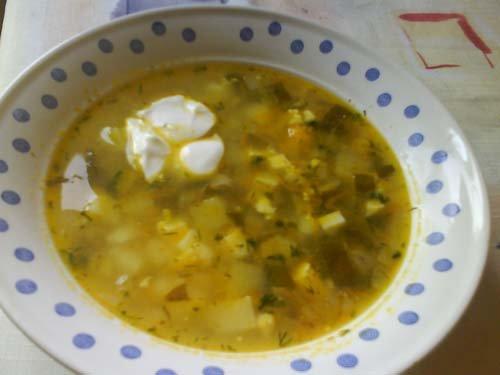 Рецепты супов из щавеля – легко и вкусно!