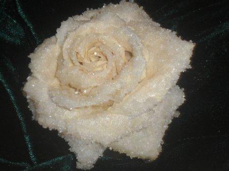 Рецепт Засахаренная роза - для украшения тортов... а можно и так есть