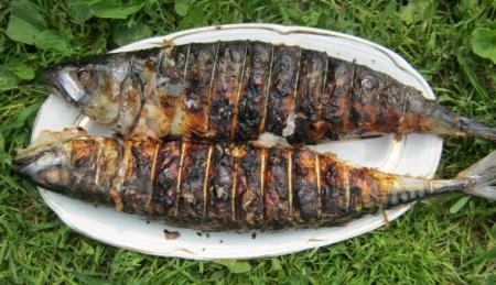 Рецепт Скумбрия с кунжутным лучком