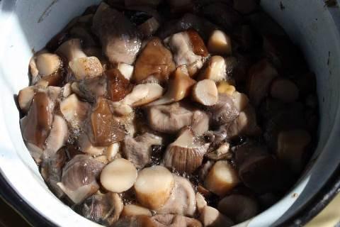 Вкуснейшие грибные котлеты