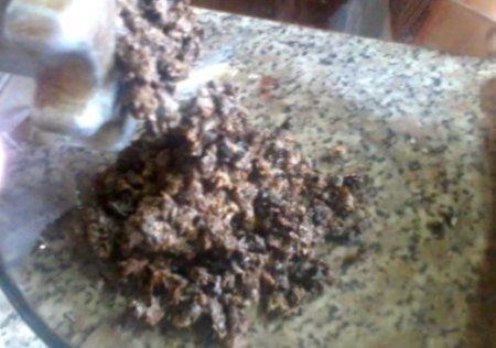 Суп-пюре из сушенных грибов