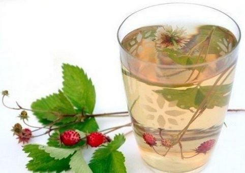 Травяной чай из клевера и земляники